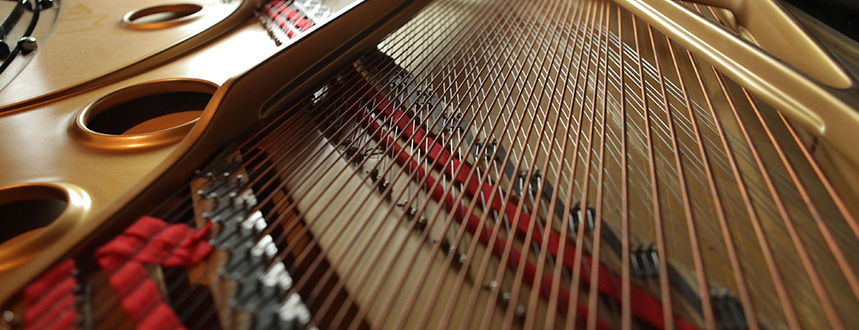 Dan L. Crawford Piano Tuner and Technician : Des Moines, IA